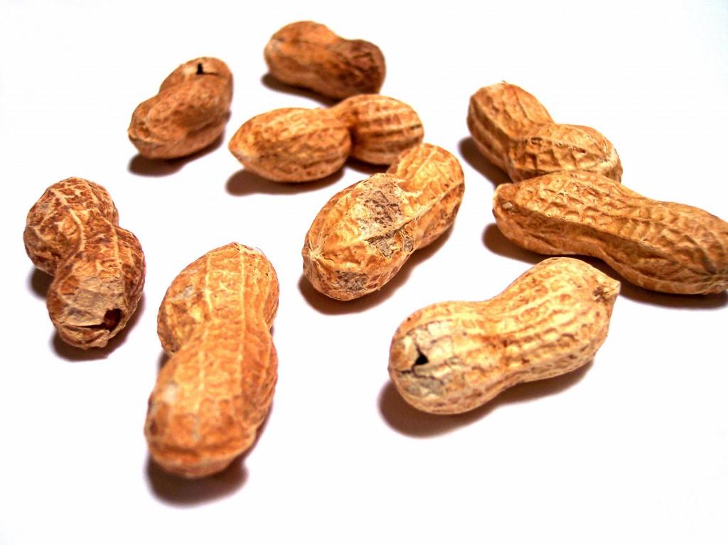 Biscotti con arachidi