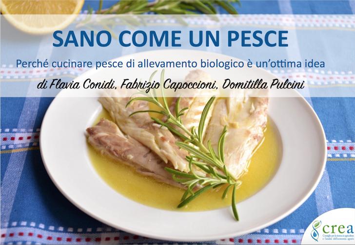 sano come un pesce ricettario gratis pdf