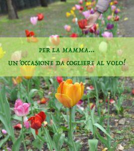 Festa della mamma: l'occasione da cogliere
